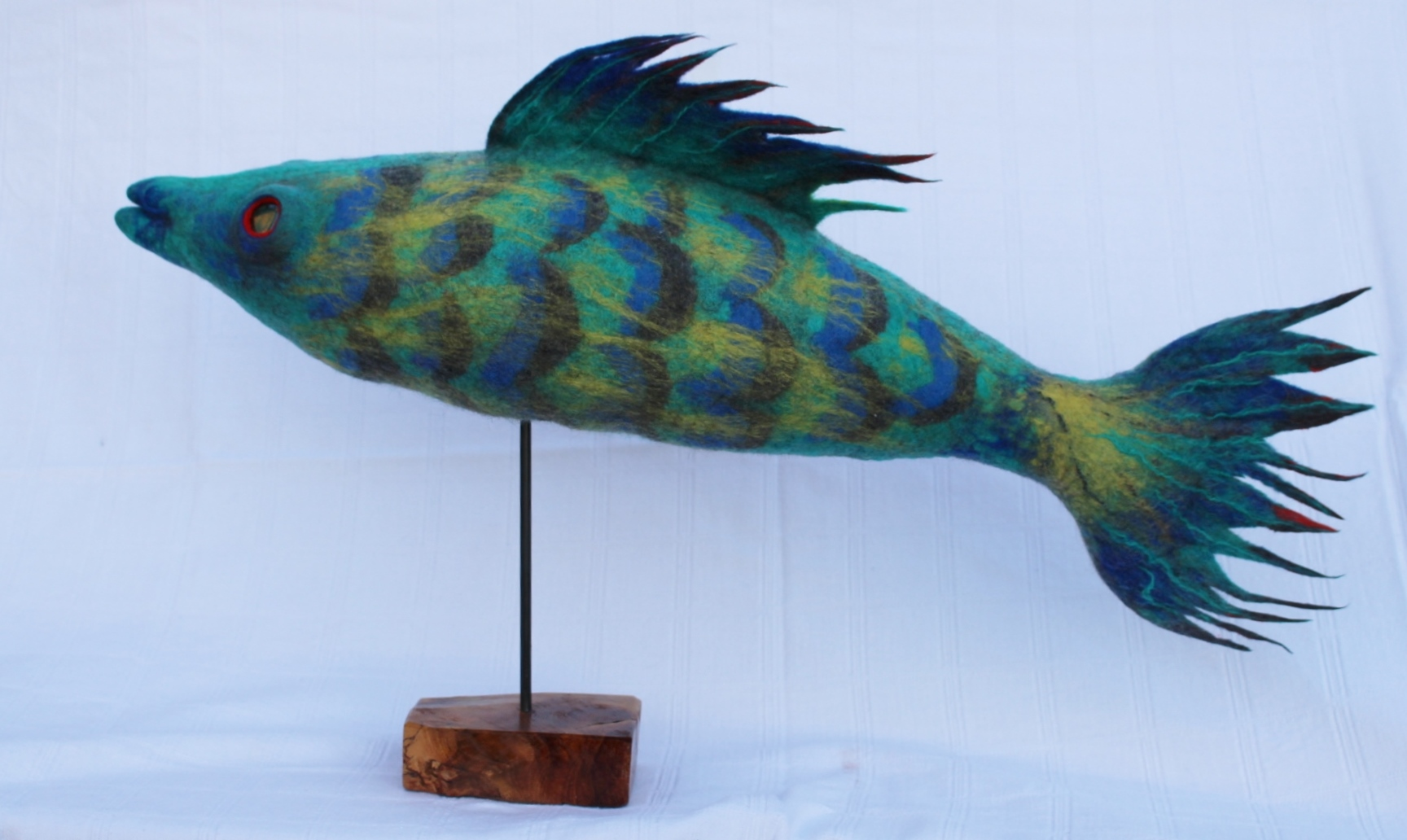 Parrotfish, Elaine Peden, element15