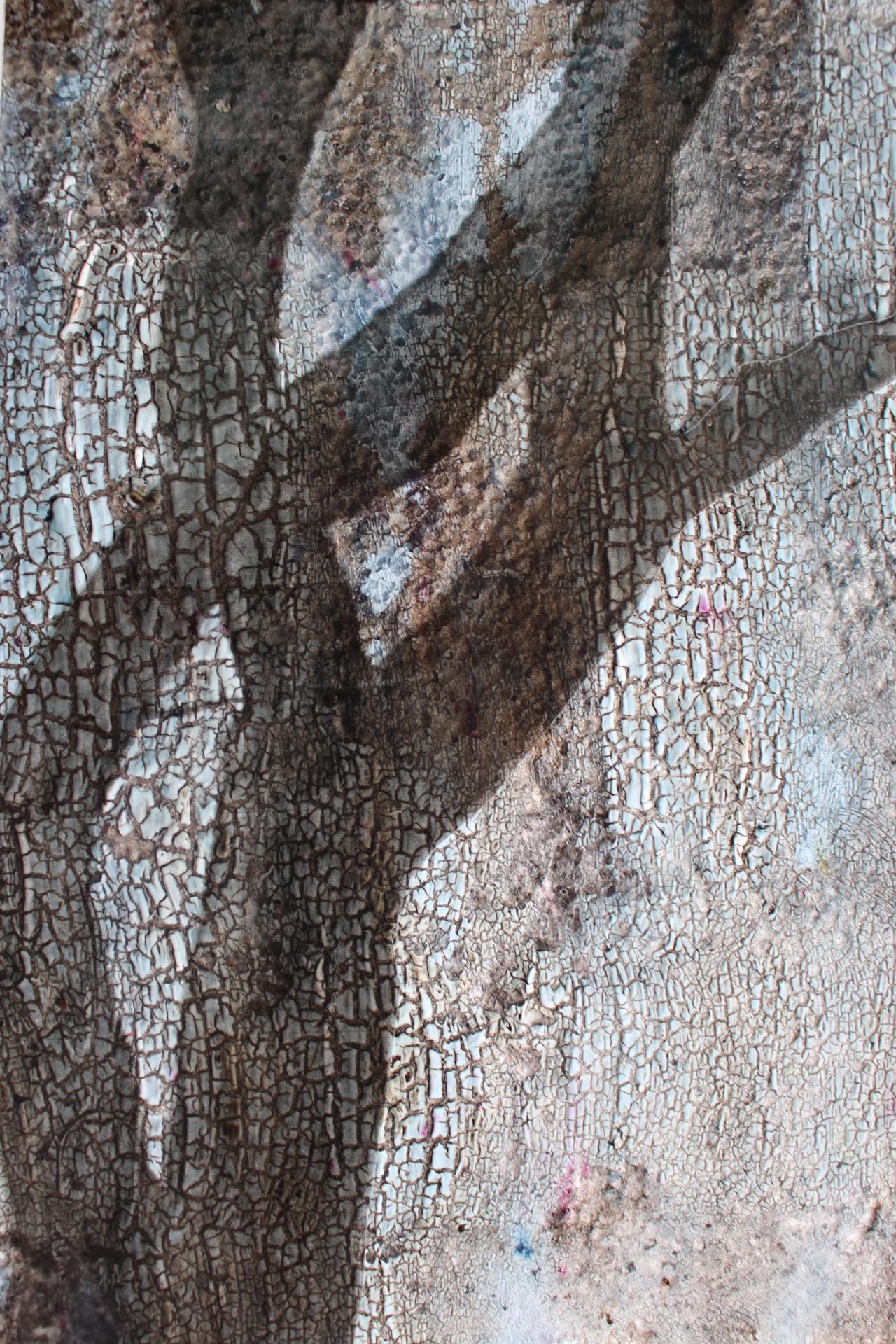 Shadow, Helen McLoughlin, element15