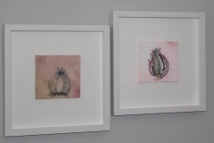 Onion II and Onion III, Rina Whyte, element15